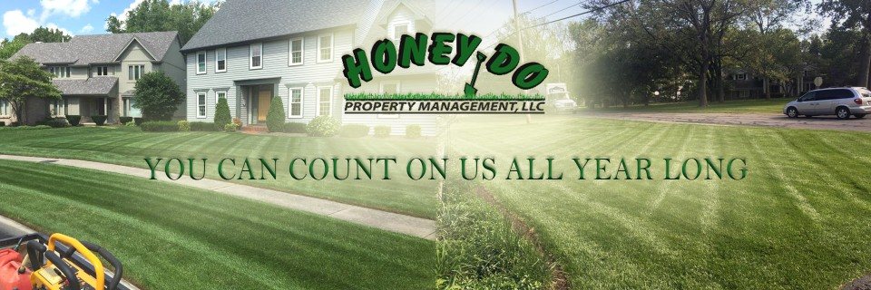 Call Honey Do Property Management to Clean the Fall