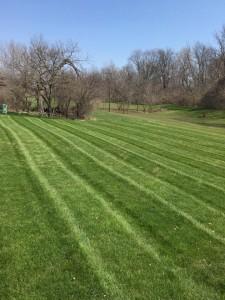 Toledo lawn stripes