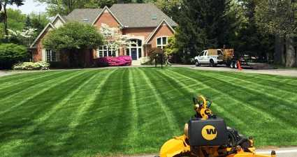 Keeping Grass Green During Hot Weather